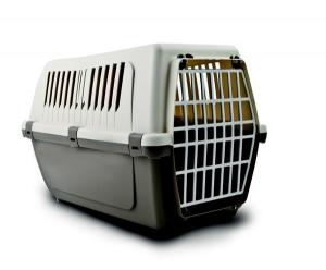 Переноска пластиковая для кошек и щенков Vision 55 Plastic размер : 54*36*37